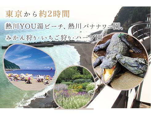 東京から約2時間熱川YOU湯ビーチ、熱川バナナワニ園、みかん狩り・いちご狩り・ハーブ園