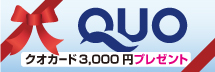 QUOカードプレゼントプラン(3000円)