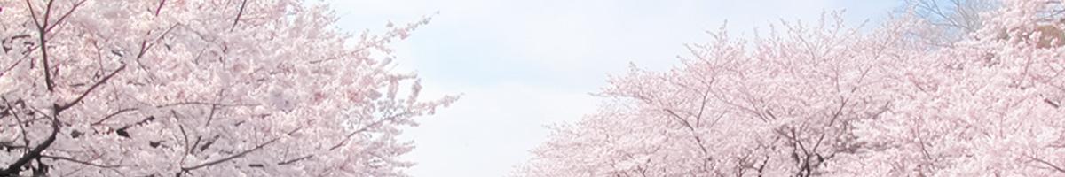ホテルライフツリー上野